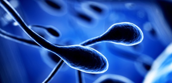 13 Causes of Male Infertility